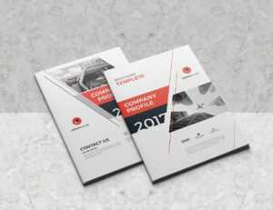 30+ Company Profile Brochure Templates | Decolore pertaining to Adobe Indesign Brochure Templates