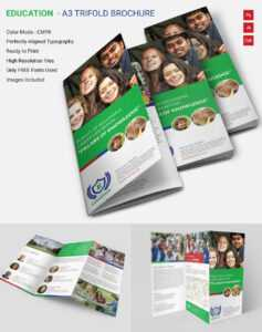 Attractive Education A3 Tri Fold Brochure Template | Free for Tri Fold Brochure Template Indesign Free Download