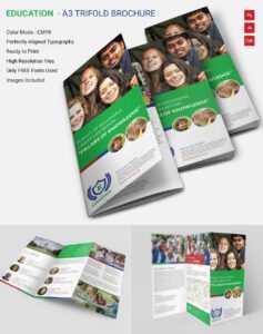 Attractive Education A3 Tri Fold Brochure Template   Free for Tri Fold School Brochure Template