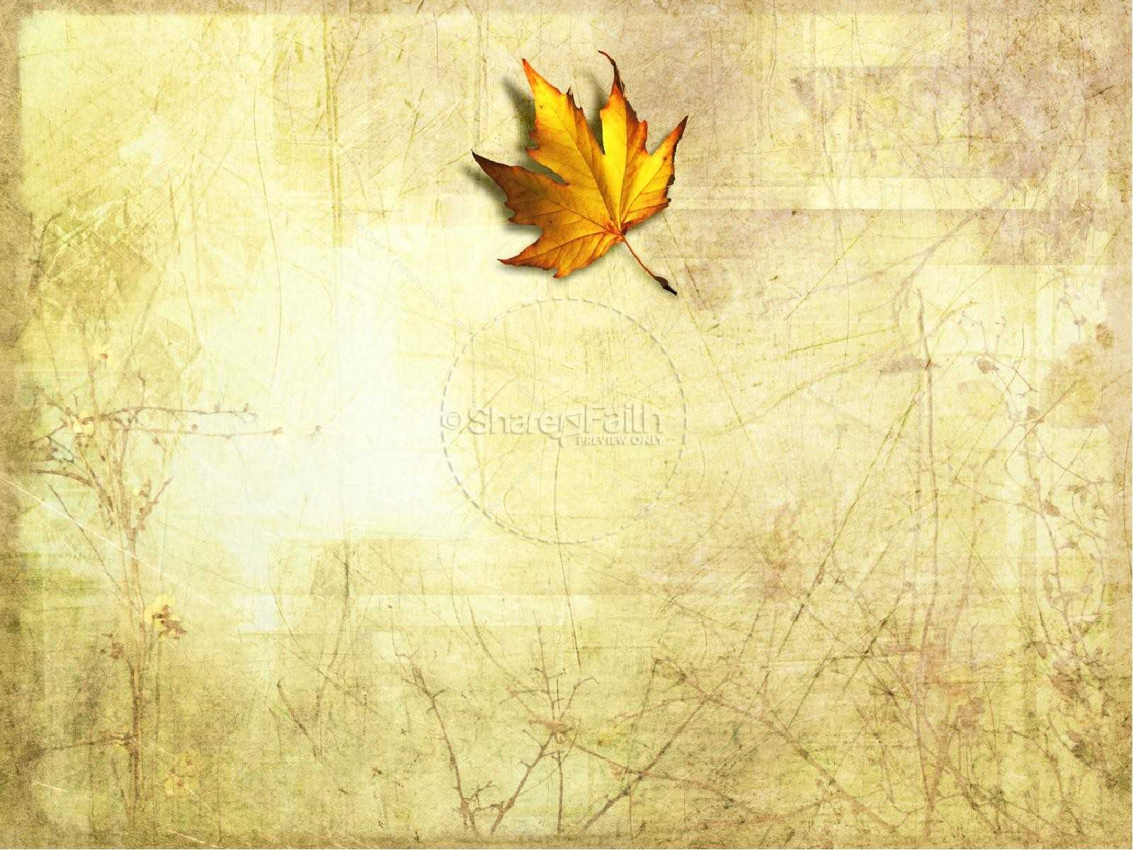 Best 54+ Fall Leaves Powerpoint Background On Hipwallpaper For Free Fall Powerpoint Templates