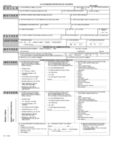 Birth Certificate Maker – Fill Online, Printable, Fillable inside Birth Certificate Fake Template