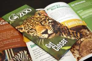 Brochure Design   Manning Design intended for Zoo Brochure Template