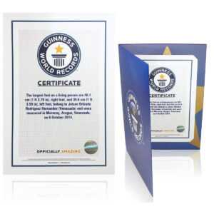 Certificates with regard to Guinness World Record Certificate Template