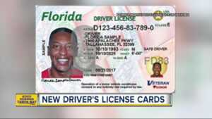 Check Out Florida's New Driver's Licenses And Id Cards regarding Florida Id Card Template