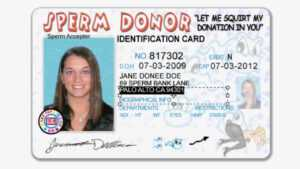 Drivers Licence Id Template – Babysitemn's Blog intended for Florida Id Card Template