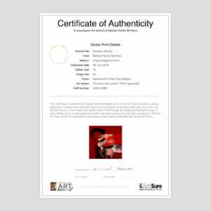 Extreme Velocity regarding Photography Certificate Of Authenticity Template