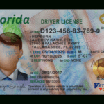 Florida Driver License Template pertaining to Florida Id Card Template