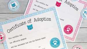 Free Printable Cat Adoption Kit | Chickabug inside Pet Adoption Certificate Template