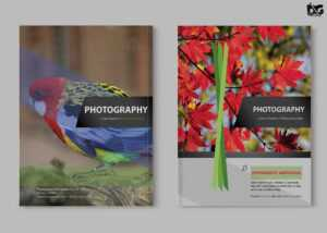 Free Zoo Photography Psd Brochure Template   Free Psd Mockup inside Zoo Brochure Template