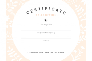 Pretty Fluffy within Pet Adoption Certificate Template