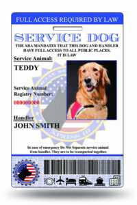 Service Dog Id | Custom & Holographic within Service Dog Certificate Template