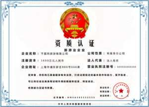 Simple Atmosphere Blue Pattern Government Style for Qualification Certificate Template