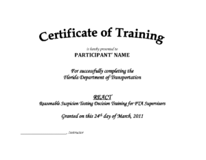 Training Certificate Template Pdf | Blank Certificates within Birth Certificate Template For Microsoft Word