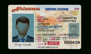 Usa Template Psd :driver License,passport,id Card & Proof Of for Georgia Id Card Template