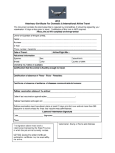 Veterinary Certificate – Fill Online, Printable, Fillable within Dog Vaccination Certificate Template
