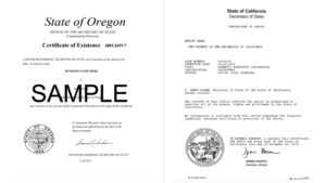 What Is A Certificate Of Good Standing? How Do I Get One pertaining to Corporate Secretary Certificate Template