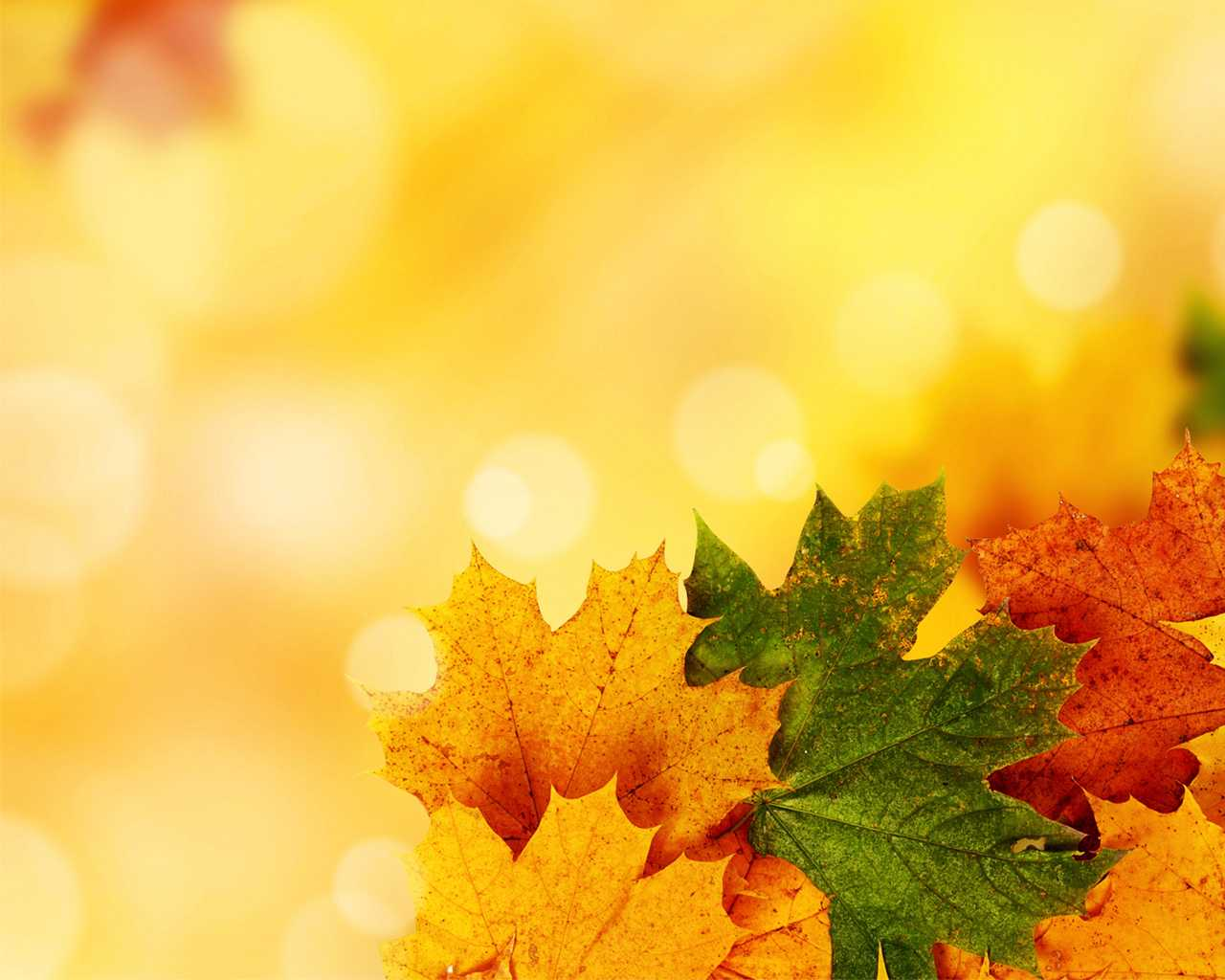 Yellow Autumn Background For Powerpoint - Nature Ppt Templates Throughout Free Fall Powerpoint Templates